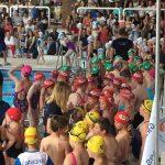 Liste des groupes Ecole de natation / groupes Ados